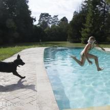 liwen-chien-guide-aveugle-21